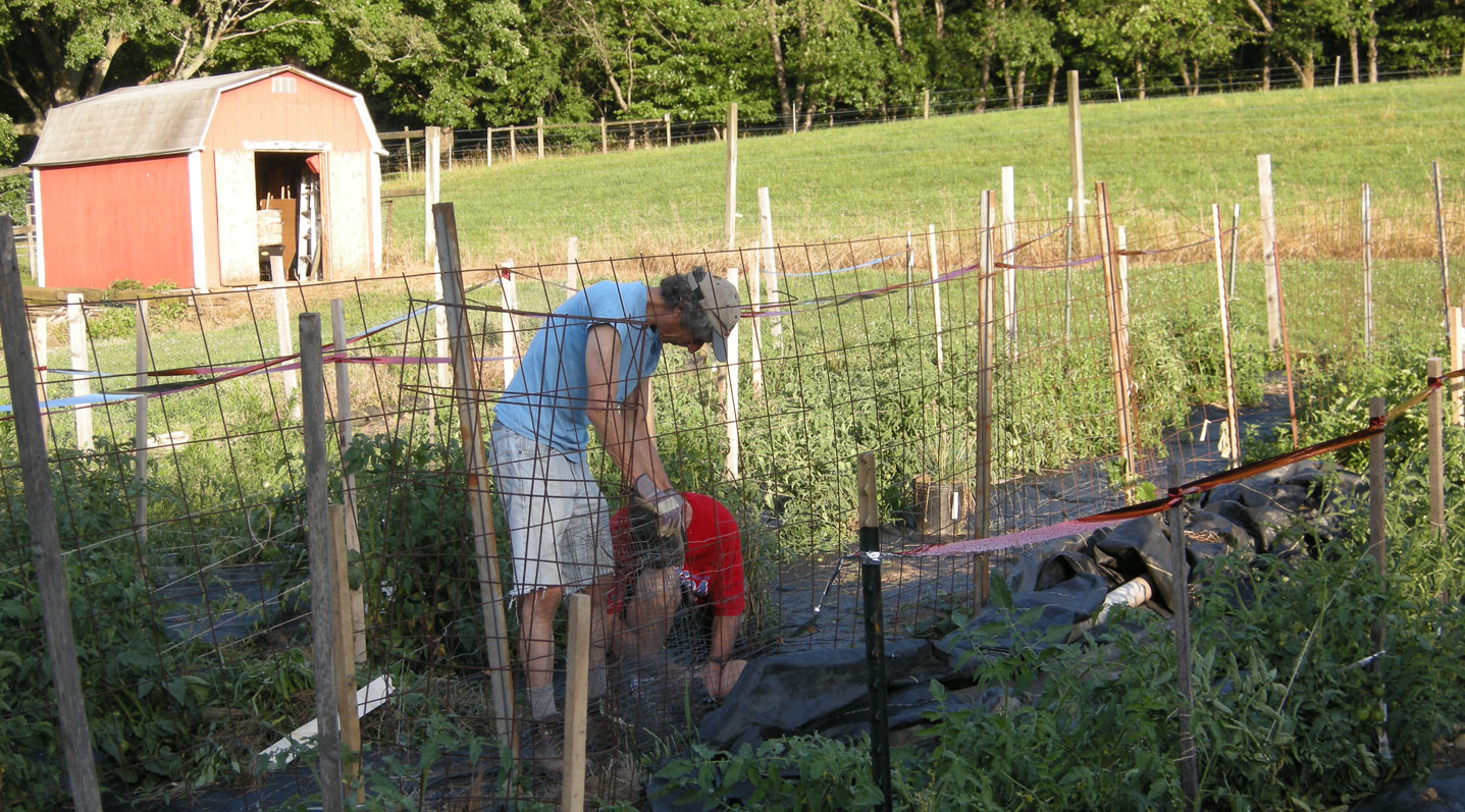 Community Garden at Fox Chase Farm